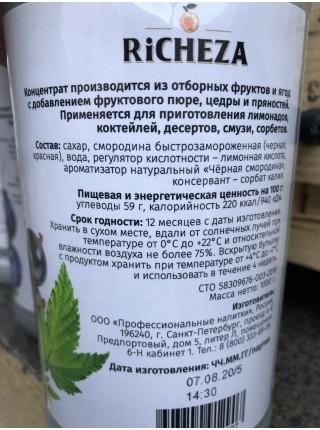 Концентрат Черная и Красная смородина Richeza 1кг.